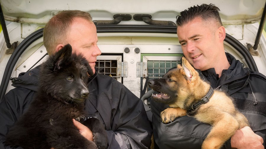 Mac and Olly. Photo: Lincolnshire Police