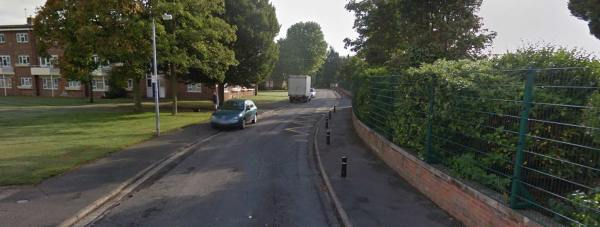 The assault is said to have happened on Carrington Drive in Lincoln. Photo: Google Street View