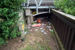 The banks of the River Witham were covered in rubbish and traffic cones. Photo: River Care