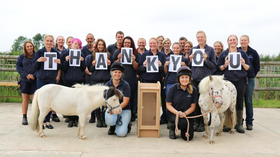 The team with the new donation box, Spotty (right) and Pegasus (left), who is looking for a foster home