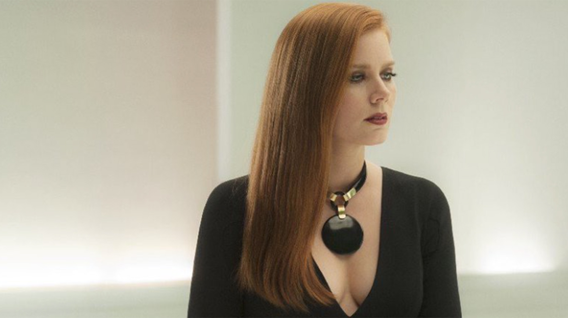 http://i1.wp.com/thelincolnite.co.uk/wp-content/uploads/2016/11/Nocturnal-animals.jpg