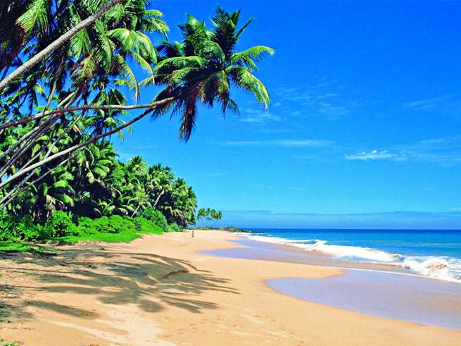 The Island of Public Holidays