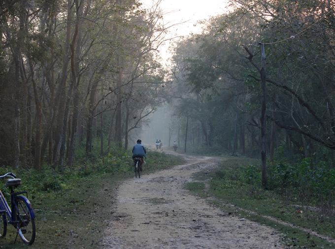 thelocalist.com-Dalla-Nepal