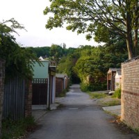 Pole Hill, Yardley Hill, Gilwell Park, Barn Hill to Enfield