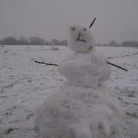 Walking in the Snow on Wanstead Flats
