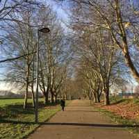 Walk from Marsh Lane Leyton, along the Lea to the Wetlands Centre