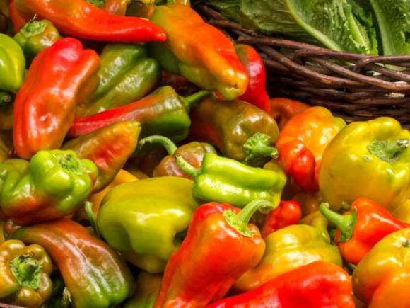 Peppers at the Hillsdale Farmers Market Recipe Index by Category
