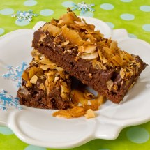Closeup of Chocolate Toasted Coconut Bars