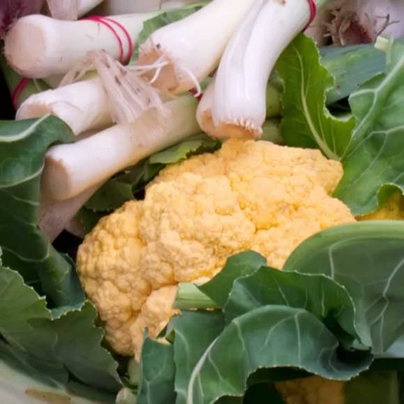Yellow Cauliflower and Leeks at Portland Farmers Market Creamy Cauliflower Leek Soup with Curried Mustard Croutons