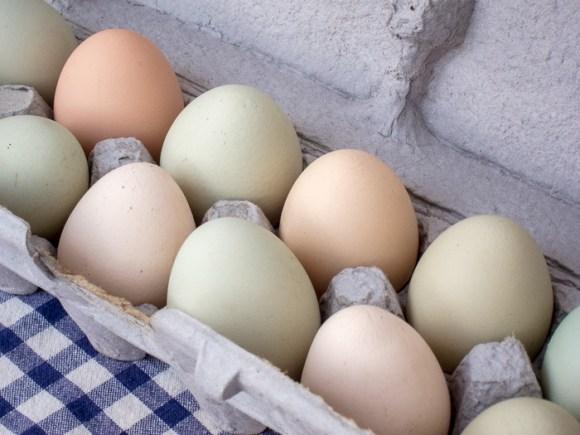 Portland Farmers Market Opening Day 2014: Farm Fresh Eggs