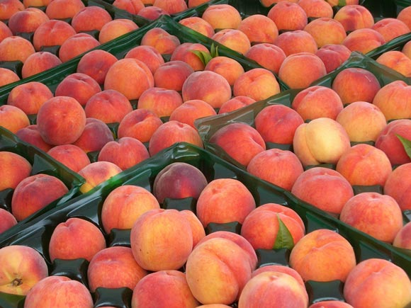 peaches at u district farme Excuse our Dust