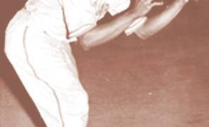 From Beloit to St. Louis: A Negro League Players' Story