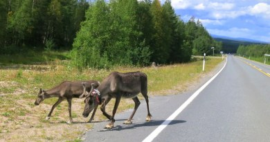 Finland Trip 2: Kuusamo