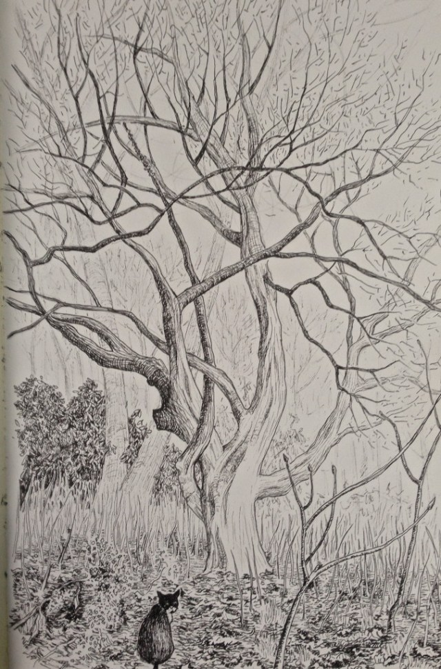 a micron pen drawing of a tree and a cat
