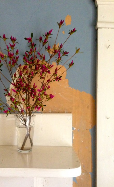 Azaleas on the mantel and plaster walls