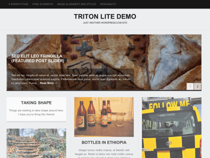 Triton Lite WordPress Theme