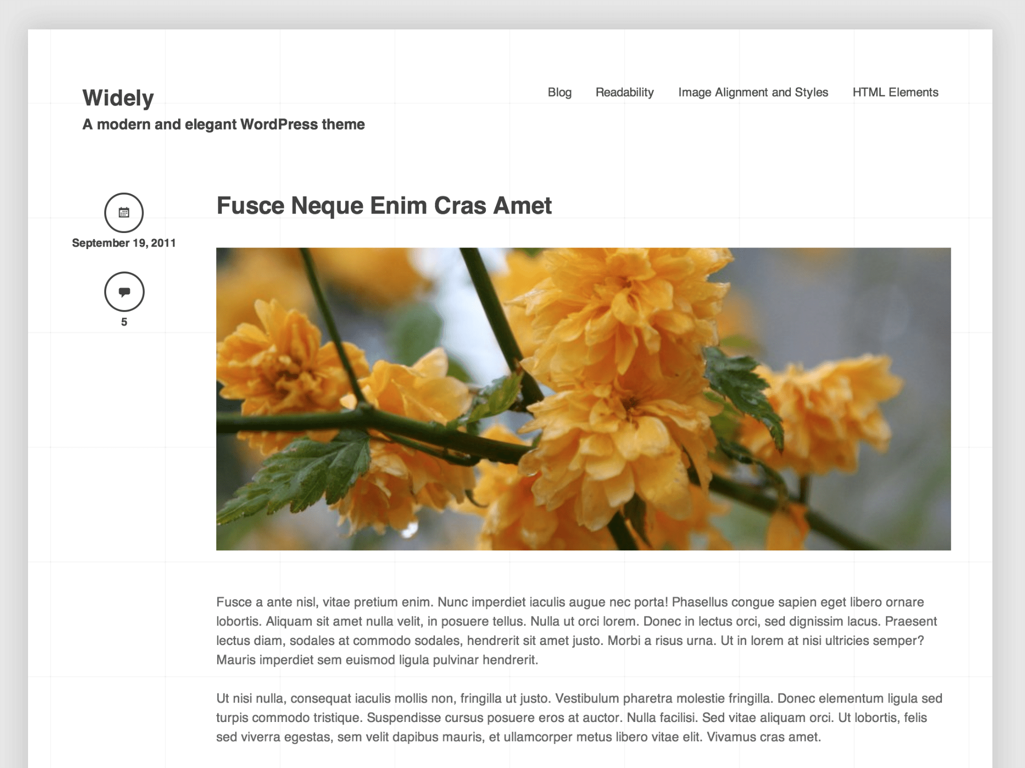 Widely WordPress Theme