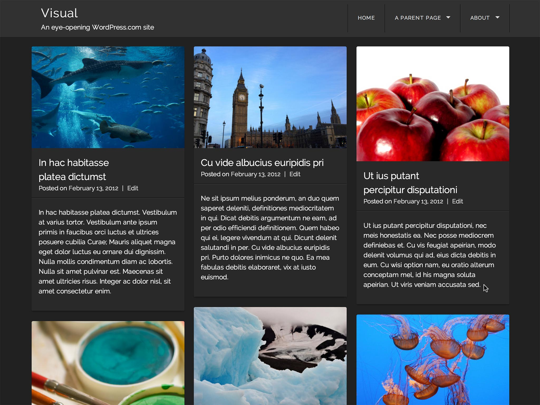 Visual WordPress Theme