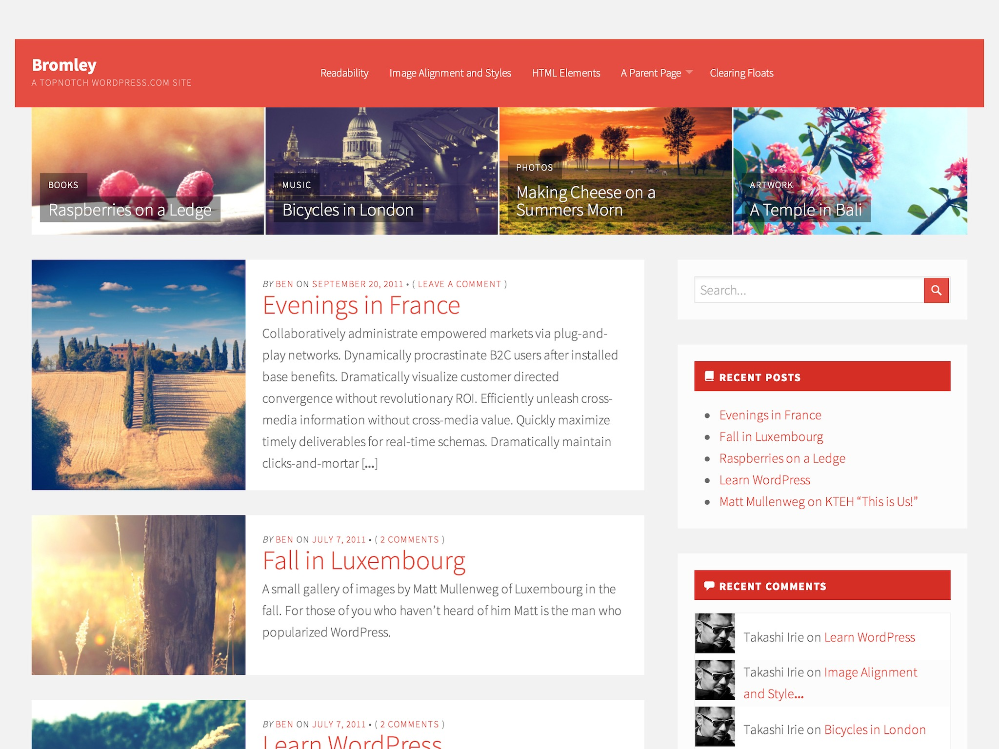 Bromley WordPress Theme