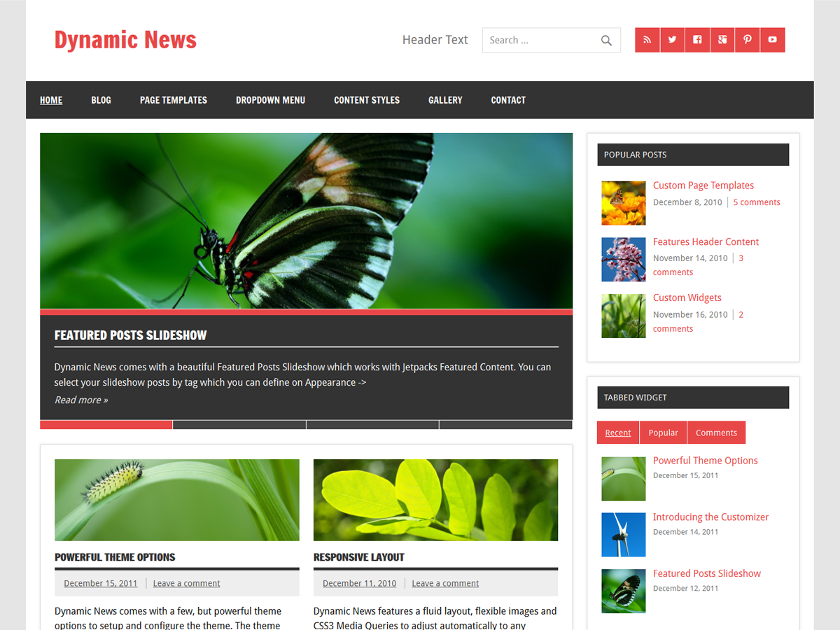 Dynamic News WordPress Theme