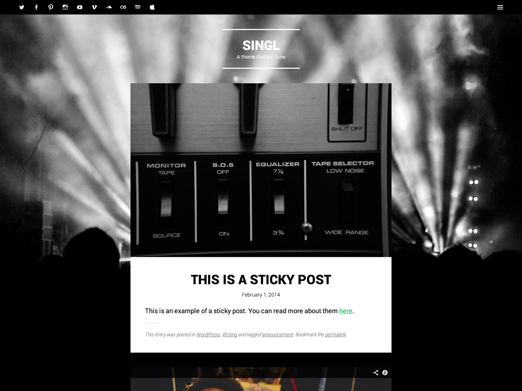 Singl WordPress Theme
