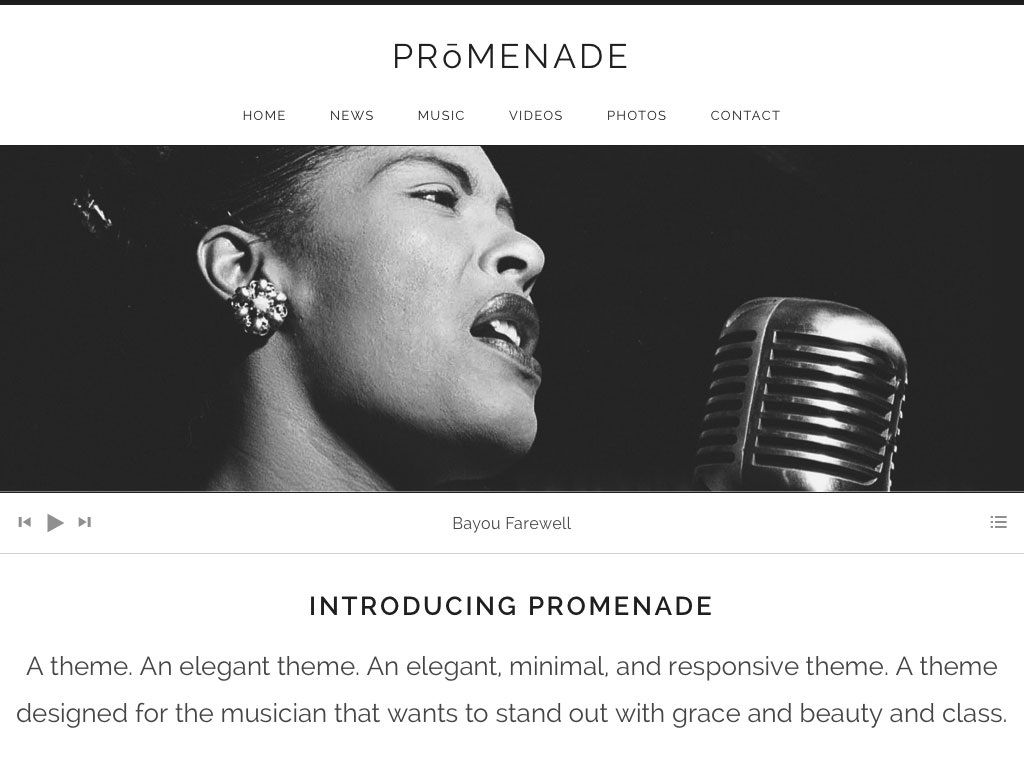 Promenade WordPress Theme