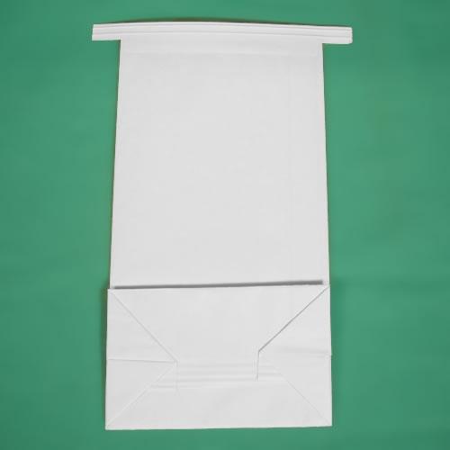 airsickness bag
