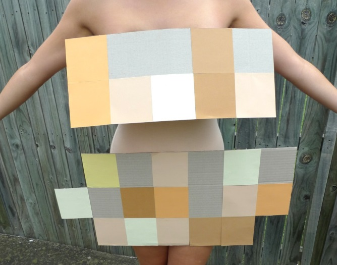 Pixel pieces costume