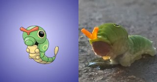 16 Pokemon that are based on real world things