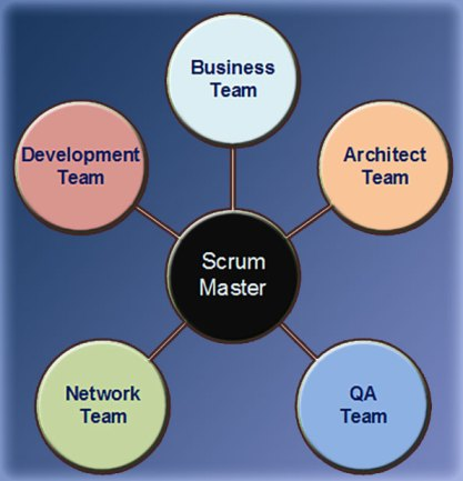 The Agile Teams