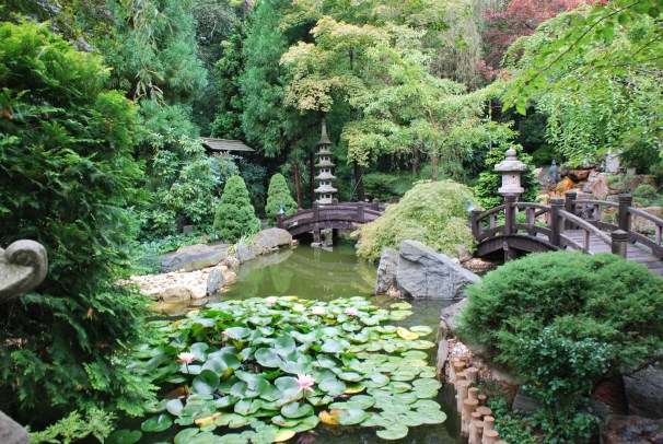 Hillwood_Estate_Japanese_Garden