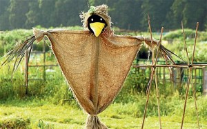 Man-dies-after-sex-with-scarecrow