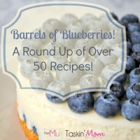 Barrels of Blueberries! (A Round Up of Over 50 Recipes)