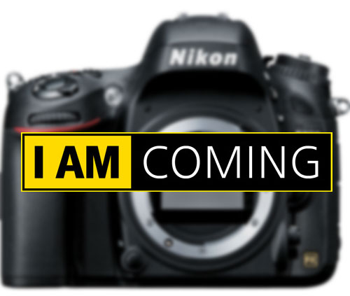 Nikon-D5300-Nikon-D610-Image