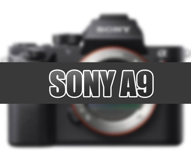 Sony A9 Rumored specification