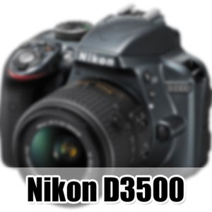 Nikon-D3500-image