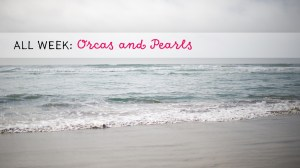 All Week: Orcas and Pearls
