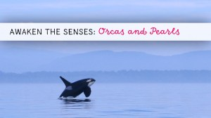 Awaken the Senses ~ Orcas and Pearls