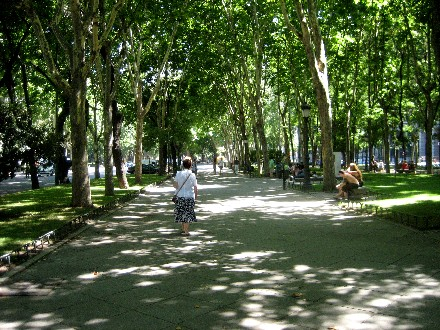 This tree-lined apart immediately in front of the Prado is an attactive and comfortable place to stroll.