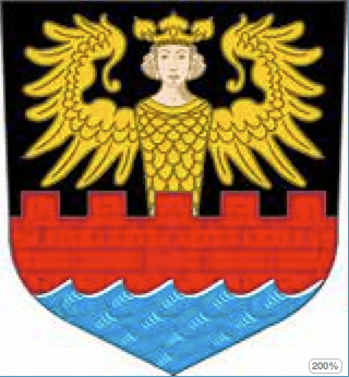 "The official emblem of Endem, ""The Angel on the Wall."""