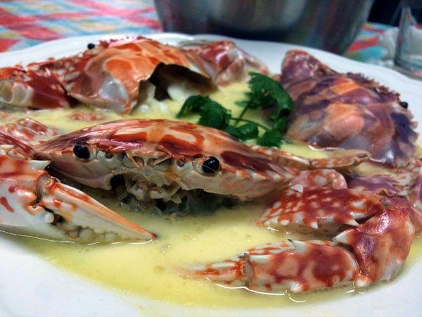 Hong Kong Traveling Spoon Crabs