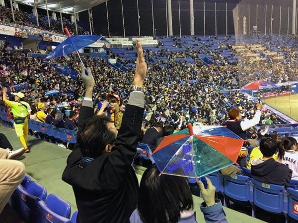 Tokyo Baseball - Umbrella Closeup