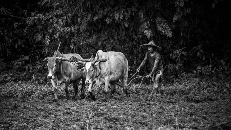 Theo-Heritier-Burma-0521