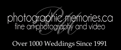 logo with 1000 weddings