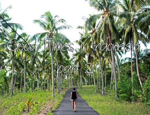 Exploring Indonesia, Canggu, Ubud, Nusa Penida, Menjangan