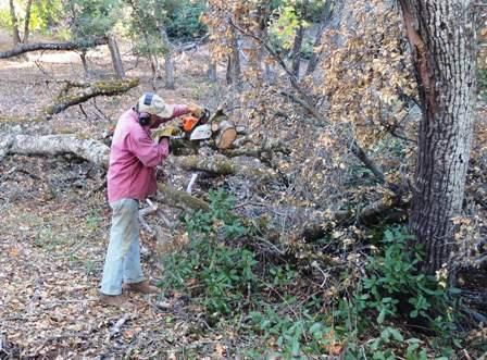Cutting firewood. Split wood not atoms!