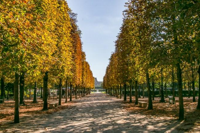 the-overseas-escape-paris-fall-2016-10