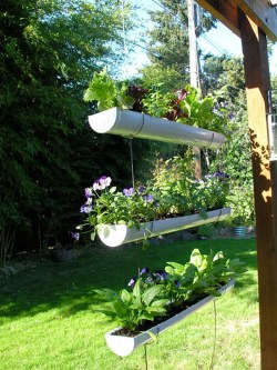 Small Of Hanging Garden Ideas