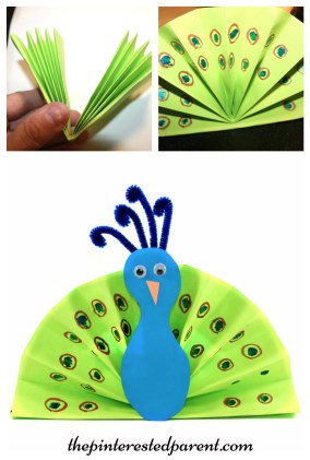 Construction paper fan peacock craft - kid's arts & crafts