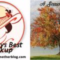 image-sundaysbest-linkup-seasonofcolors